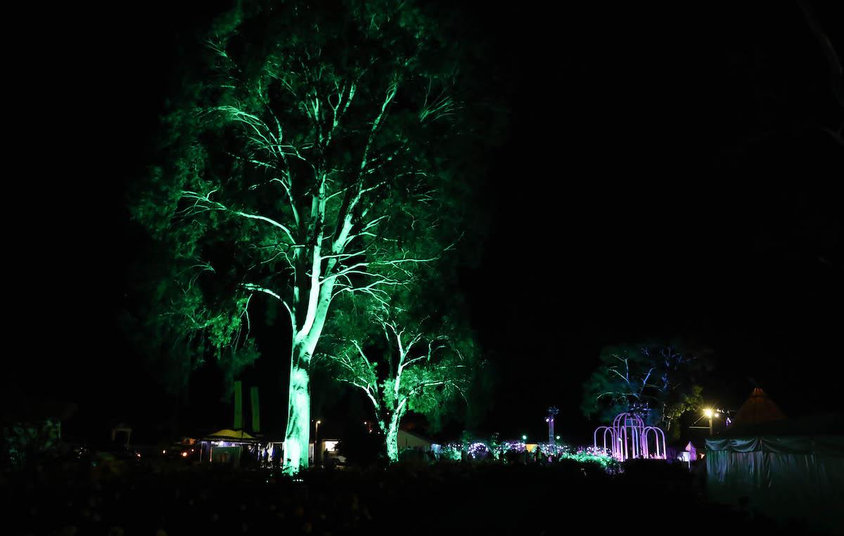 Saturday night gallery image